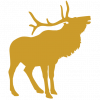 cropped-site-icon-elk.png